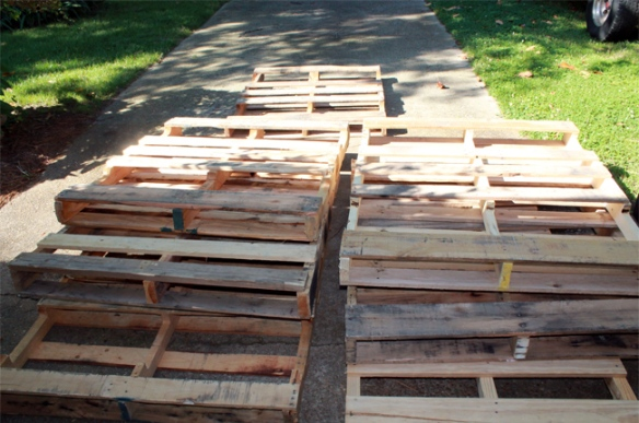 pallets_Before