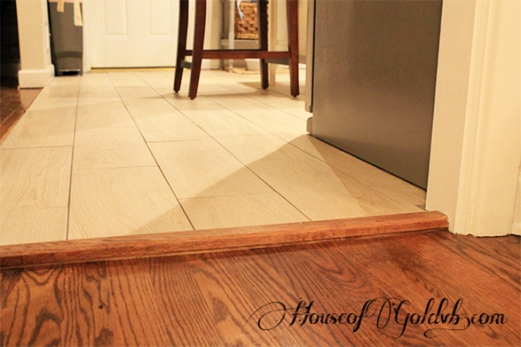 Floor Transition_HouseofGold