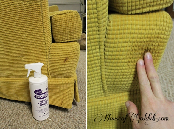 Stain Cleaning_HouseofGold