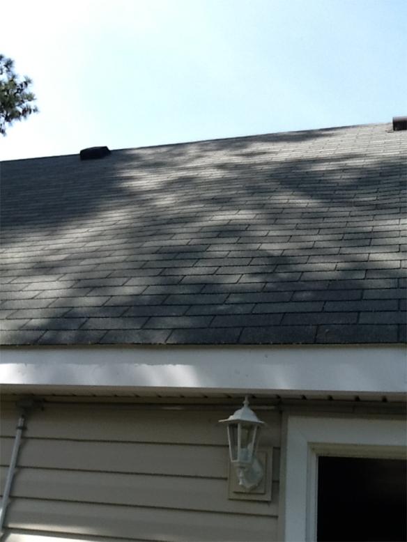 Bubble Roof_HouseofGold