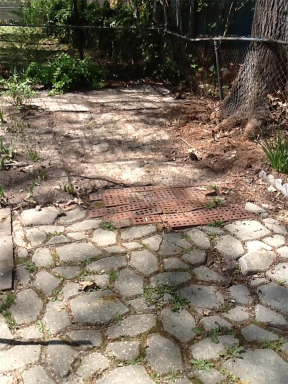 Concrete Yard_HouseofGold