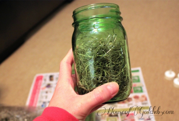Moss Jar_HouseofGold