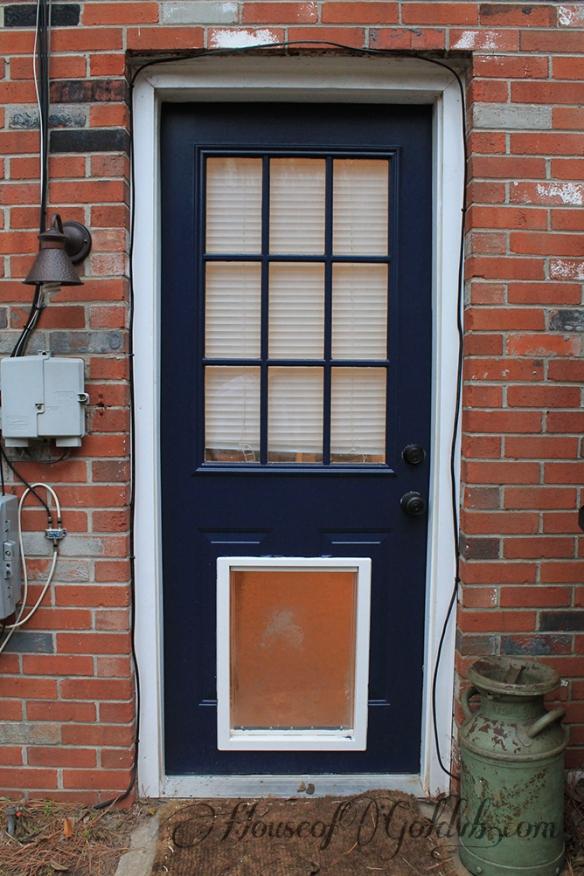 Back Door Painted